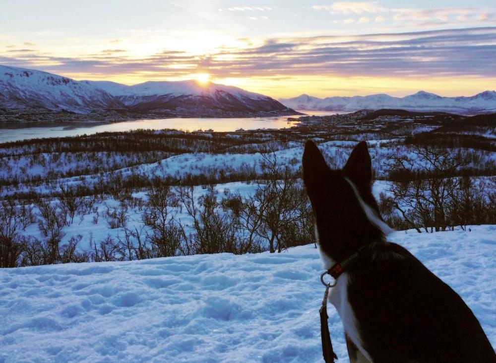 Wintersun, Tromsø